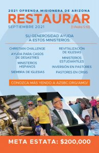 AMO 2021 insert-Spanish